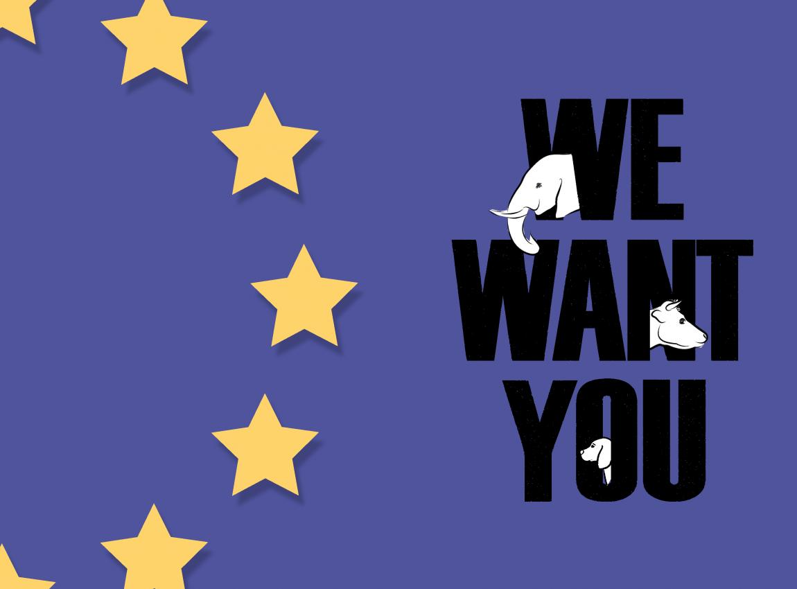 Time for an EU Commissioner for Animal Welfare