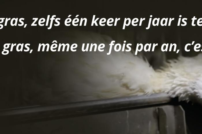 A Christmas ad urging the public not to eat foie gras
