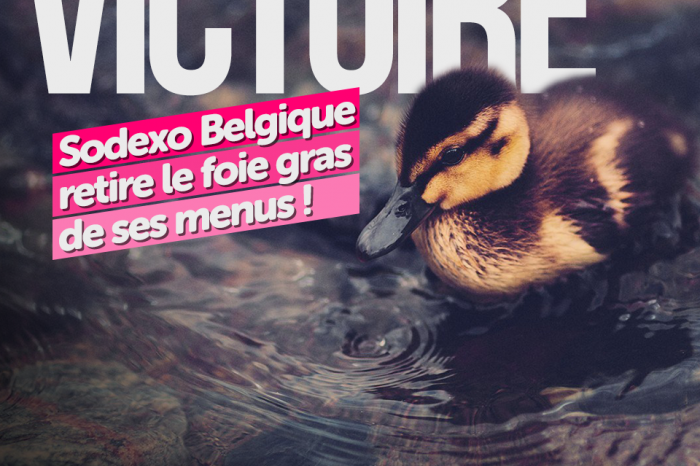 Sodexo supprime le foie gras de son menu