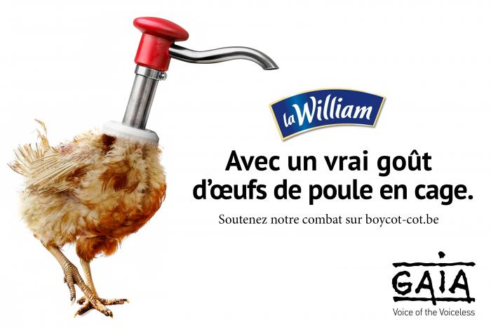 Nouvelle cible contre les œufs de batterie : La William